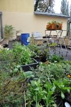 garden-lab_reininghaus_01